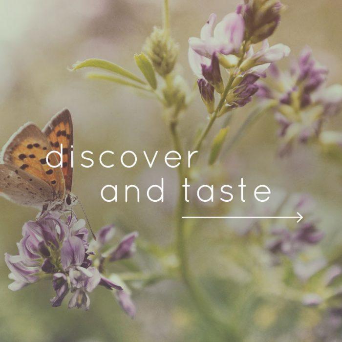 discover-cta